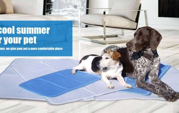 Why use cool gel mat for your dog?